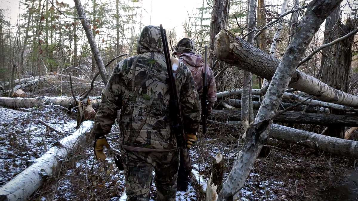 Air Arms Pest Control Hunting in Canada